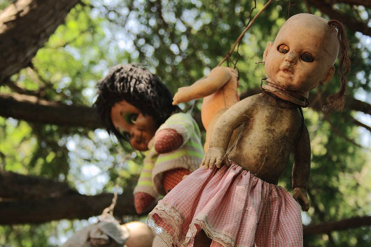Dolls hang from tree limbs on this island south of Mexico City (Photo by Esparta Palma)